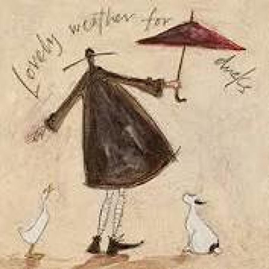 Sam Toft - lovely weather for ducks