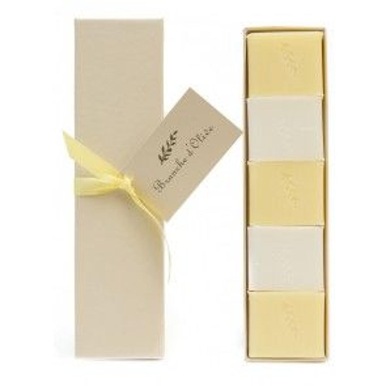 Branche de olive - Boxed guest soap - Verveine