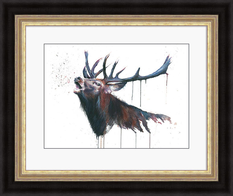 Sarah Stokes - Framed print - Roar