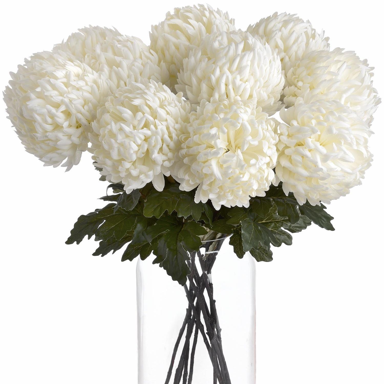Large white Chrysanthamun